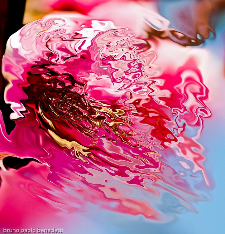 fluid pink shape on blue background
