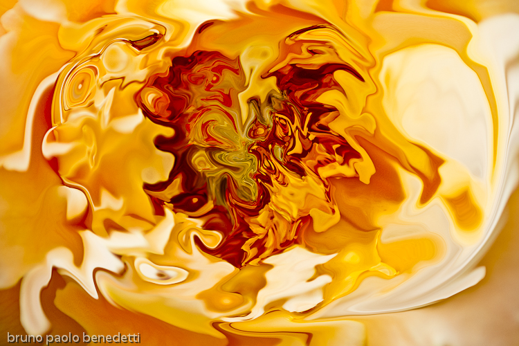 photography based digital art: fluid shape in orange color with many shades and undertones