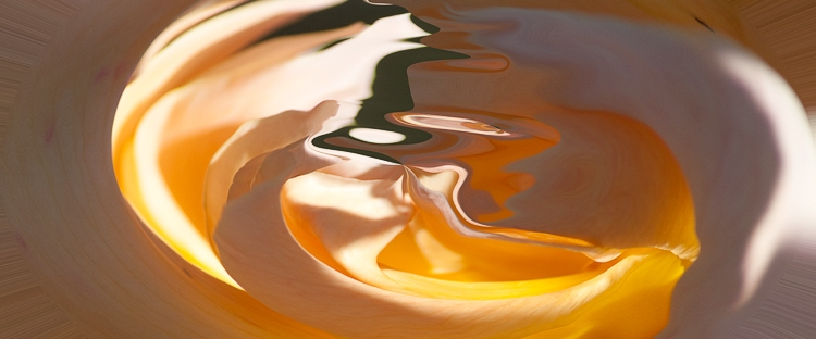 light reflections on orange fluid curved shape