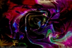 rainbow colored fluid shapes abstract image with swirling shapes on black background