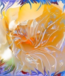 warm colors abstract image with flower and pistils like moving shapes from inner orange color center